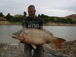 Massive carp!