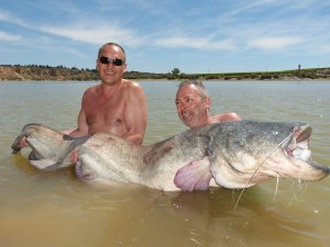 Big cats and Carp for Dutch anglers
