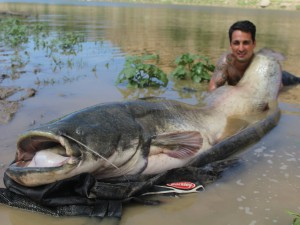 Charlie smashes it with a 205lb catfish